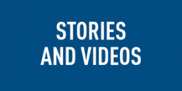 Stories and Videos